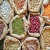 ۹ گام رونق صادرات موادغذایی