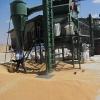 فرایند عملیات بوجاری غلات (گندم و جو)