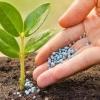 ویروس کرونا و اختلالات تولیدکودهای کشاورزی