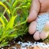 « اثرات مصرف بی رویه کودهای شیمیایی »