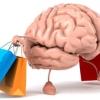 تشخیص ارزشمندی کالا توسط مغز