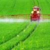 اثرمحلول پاشی آهن بر تولیدات کشاورزی