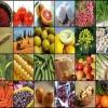 « قابلیت های بالای بخش کشاورزی در بی اثر سازی تحریم ها