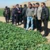 كارگاه آموزشی افزايش بهره وری و بهبود تغذيه گياهی در استان فارس