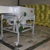 خرید و بوجاری انواع بذور گندم در شرکت خدمات حمایتی کشاورزی استان سمنان
