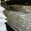 تامین و توزیع بیش از 87 هزار تن انواع کود کشاورزی در استان مازندران