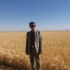 ارسال نمونه بذر از مزرعه نمایشی پایلوت تغذیه  گندم   به مرکز تحقیقات کاربردی نهاده های کشاورزی کرج - تیرماه سال 1399 استان مرکزی