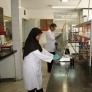 مركز تحقيقات كاربردی نهاده های كشاورزی وابسته به شركت خدمات حمايتی كشاورزی